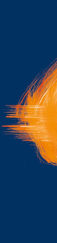 Bandeau - Anne Catherine Franzetti atelier de graphisme : logotypes, affiches, édition, signalétique, cartes de visite, prospectus, packaging, valais martigny - cat atelier