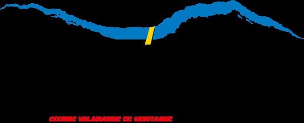 Fully_Sorniot - Anne Catherine Franzetti atelier de graphisme : logotypes, affiches, édition, signalétique, cartes de visite, prospectus, packaging, valais martigny - cat atelier